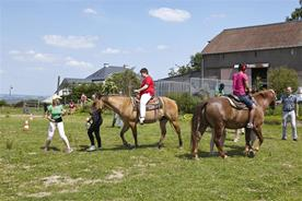 Horse-riding camp in Hosingen for children and young persons, (9 - 15 June 2014)